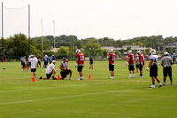 Tennessee Titans Practice July 30 2012-17